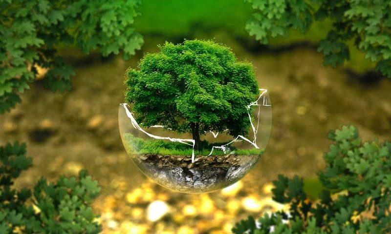 La consulenza ambientale continuata